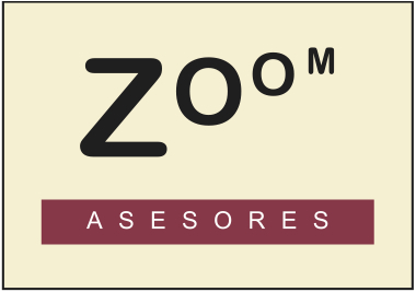 zoom ASESORES